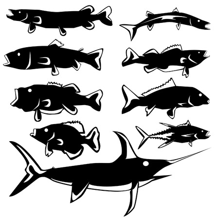 underwater fishes: Freshwater and saltwater fish in vector silhouette with stylized illustration