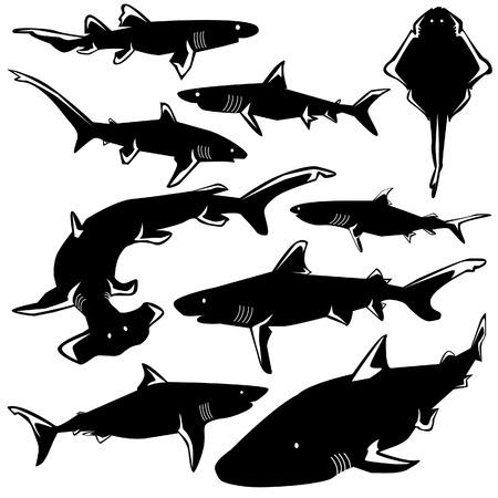 Peligrosos tiburones de vectores con silueta estilizada ilustración