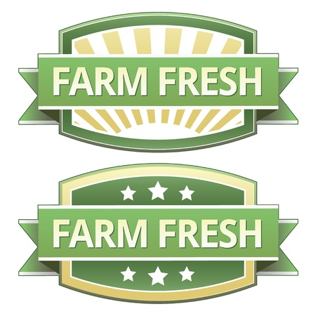 preservatives: Farm Fresh on yellow and green food label, sticker, button or icon for use on packaging, print, advertising, and websites.