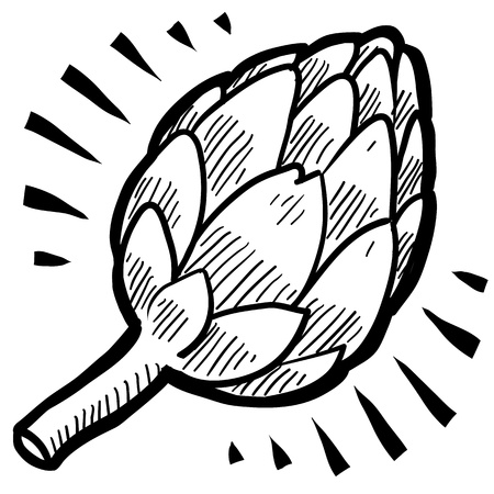 artichoke: Doodle style fresh artichoke illustration