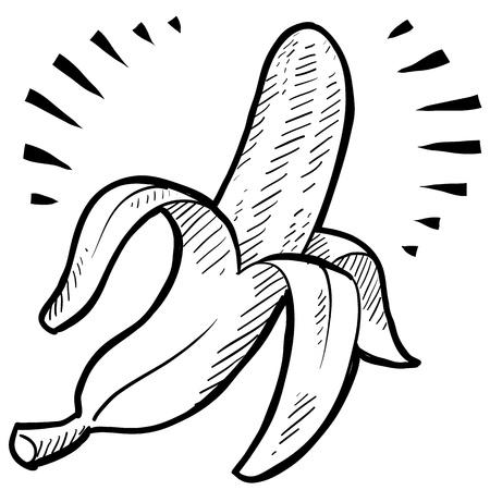 with illustration: Doodle style fresh banana illustration