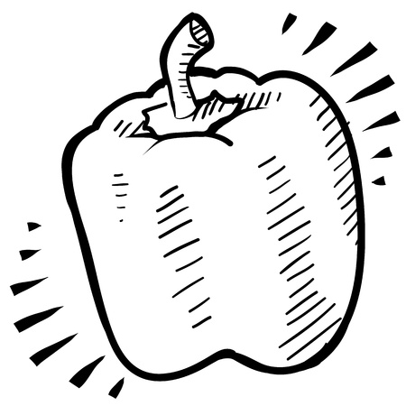 Doodle style fresh, juicy bell pepper illustration