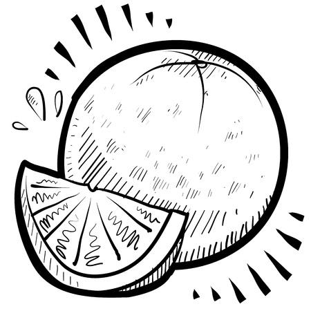 Doodle style fresh, juicy orange illustration