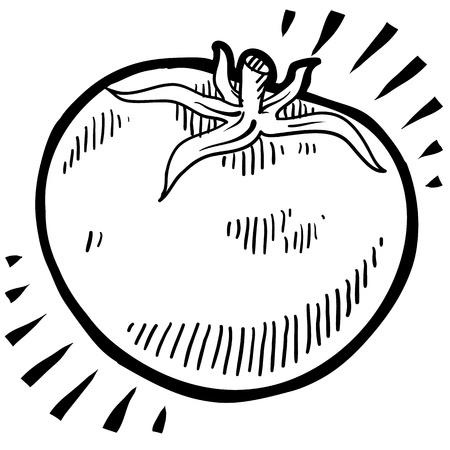 Doodle estilo fresco, ilustración jugoso tomate Foto de archivo - 13258655