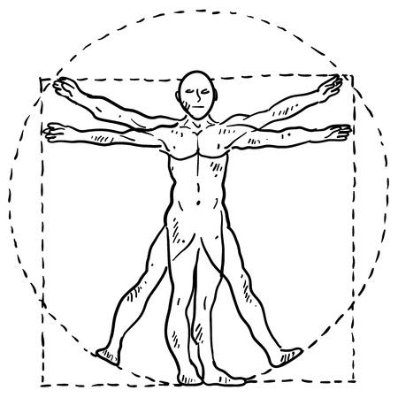 uomo vitruviano: Doodle Da Vinci corpo umano in stile illustrazione movimento con cerchio e quadrato in formato vettoriale Vettoriali