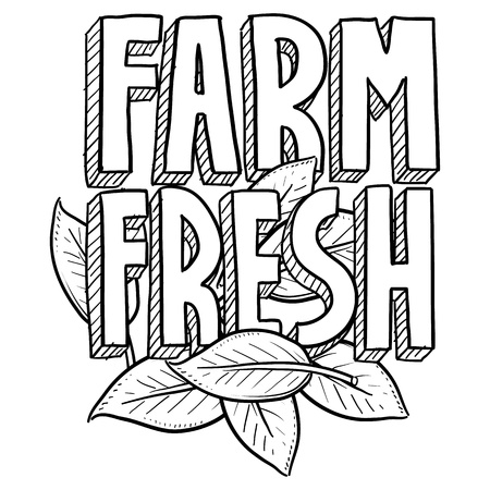 Doodle style Farm Fresh food or agriculture.  Includes text and natural leaves  photo