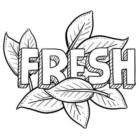 Doodle style fresh food or agriculture illustration Includes text and natural leaves  Stock Photo