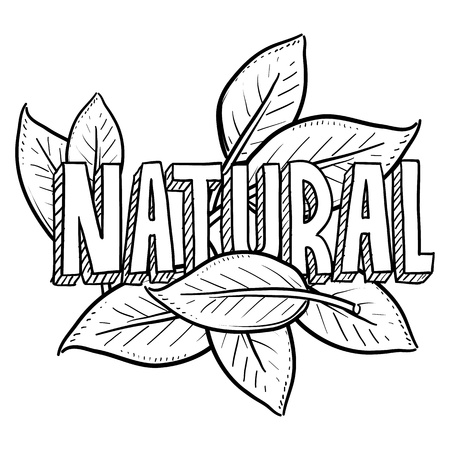 Doodle style natural food or product.  Includes title text and leaves  photo