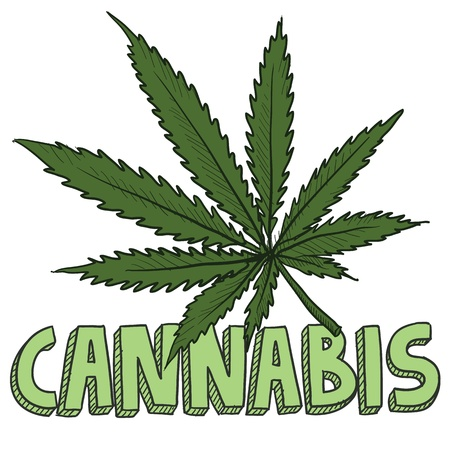 marihuana: Doodle stijl cannabis marihuana blad schets in vector-formaat Inclusief tekst en potplant