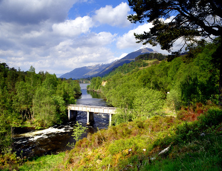 glen: View of Glen Affric