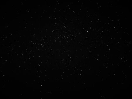 a photograph of the dark night sky full of stars and a tree in black and white 版權商用圖片