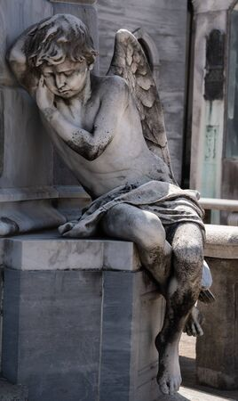 Angel Zdjęcie Seryjne