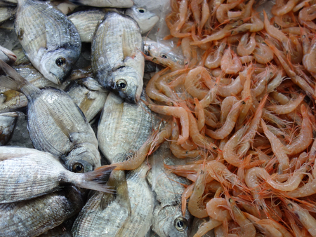 Fresh fishes in a market. Seabream and prawms.