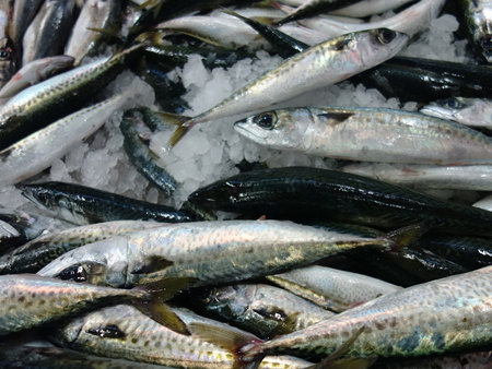 Fresh fishes in a market.