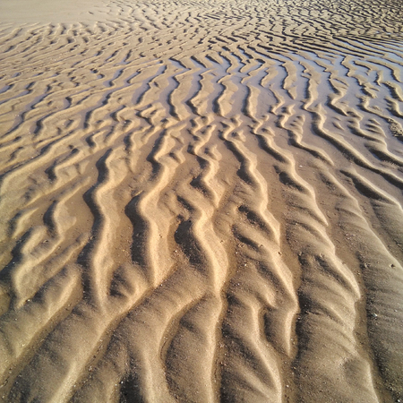 Sand Ripples on a beach. Archivio Fotografico