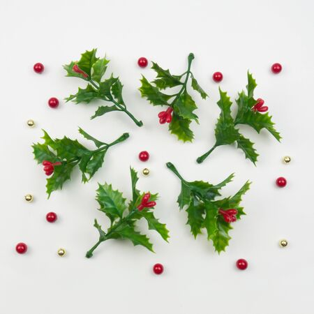 Creative Christmas layout. Mistletoe on white background. Flat lay top view.