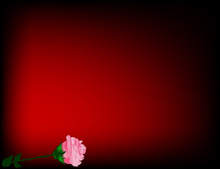 at the bottom of: Red rose on the bottom of red background Illustration