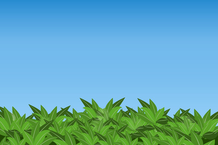 grass blades: Green leaves isolated on blue sky background. Eps10.