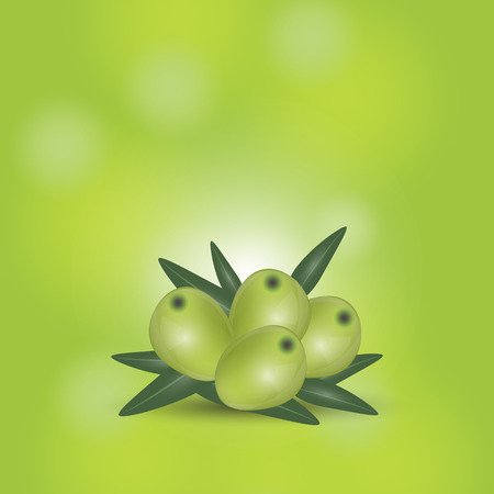 Geen olives branch isolated on green background. Design for olive oil, cosmetics, health care products. Vector Illustration