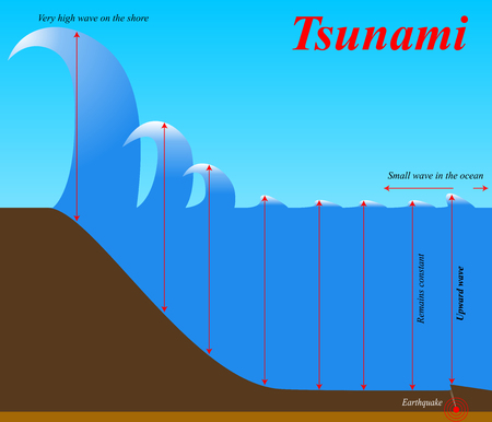 The structure of earthquake Tsunami. Education chart of natural phenomenon. Flat vector image.
