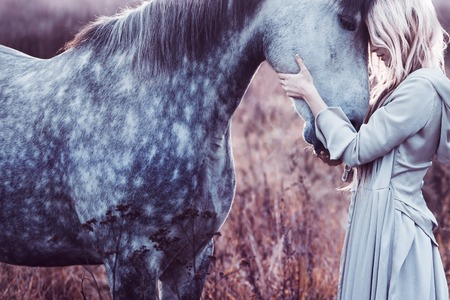 femme et cheval: Portrait d'un blondie de beauté à cheval Banque d'images