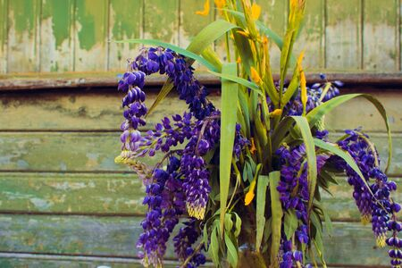 Blue withered flowers in a vase, lupins on a wooden wall background 스톡 콘텐츠