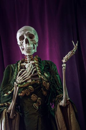 Skeleton lady in a beautiful Victorian dress, waiting for Halloween