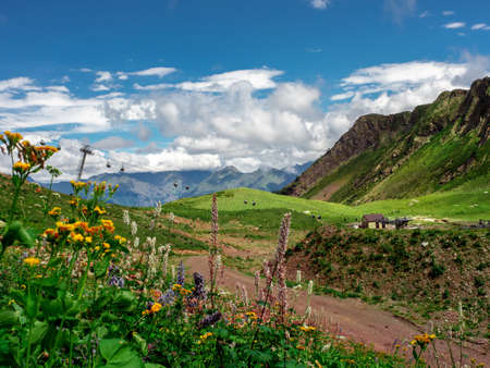 Beautiful mountain landscape, different terrain, the mountain turns into a valley. Wildflowers in the foreground