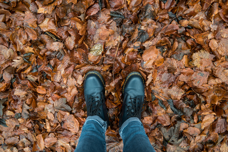 black boots: Black boots on brown leaves Editorial