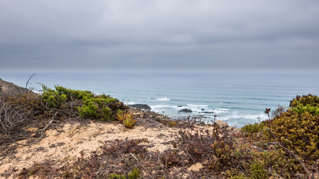 The coastline and ocean in Portugal showing grass and the sea Stock Photo