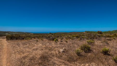 Dry grasslands in the portuguese countryside during summer