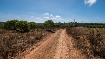 A country road going through the countryside in Portugal Stock Photo