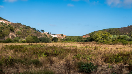 A meadow and mountains in the portuguese countrysie
