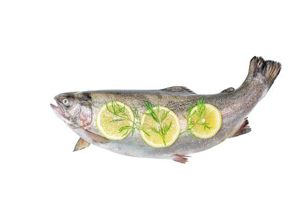 View above the whole big a salmon fish with lemon slices isolated on a white background