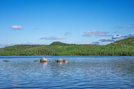 Forest lake with big stone in the water in sunny day