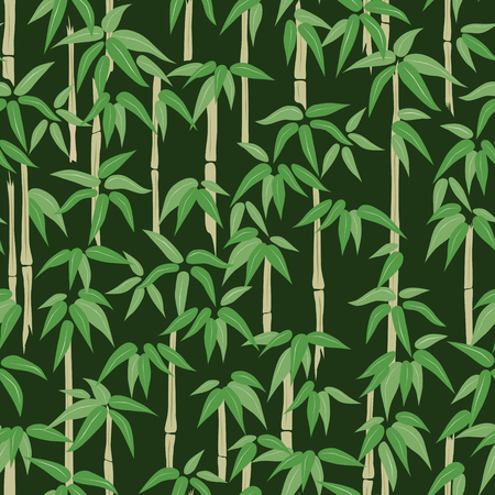 pattern of the bamboo forest.