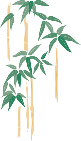 Vector image of the tropical bamboo sprouts.