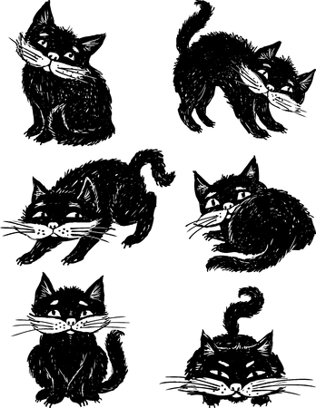 furry tail: image of a black cat in various poses. Illustration