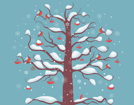 Vector image of the flock of the bullfinches on a rowan tree in the winter. Illusztráció