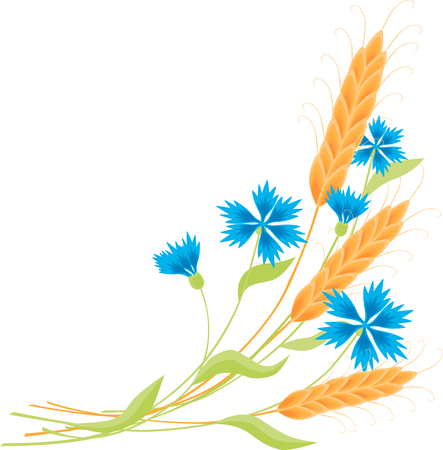 The vector image of a bunch of wheat and cornflowers.