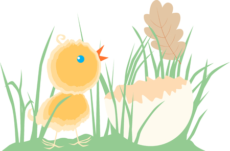 The vector image of a newborn chick in the grass.