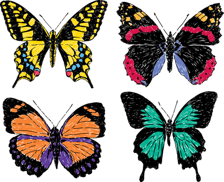 Vector image of the different buterflies.