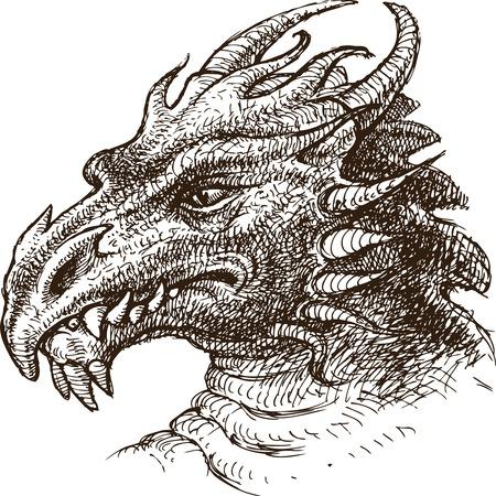 図面、スケッチのスタイルでフェアリー ・ ドラゴンのベクター。