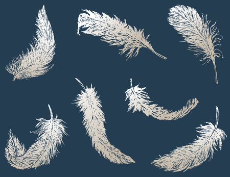 The vector drawing of the falling birds feathers. Illusztráció