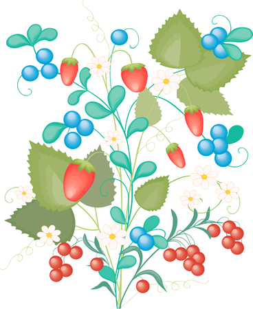 whortleberry: The vector image of the bunch of the ripe berries.