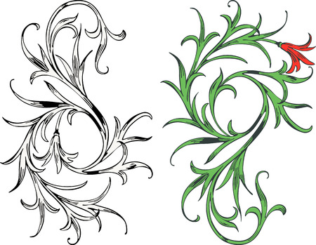 The vector image of a decorative plant. Illustration