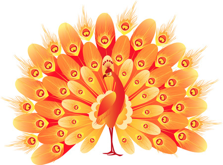 fiery: The vector image of a fiery decorative bird. Illustration