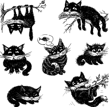 Vector drawings about a black domestic cate.