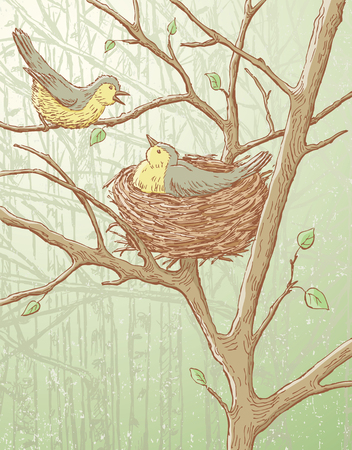 Vector drawing of the breeding birds in the spring woods.