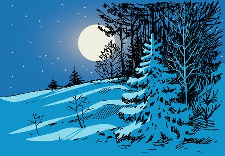 벡터 서리가 내린 겨울 밤을 그리기입니다.
